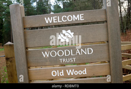 Bienvenue woodland trust signe, joli bois d'angle, sheringham, North Norfolk, Angleterre Photo Stock