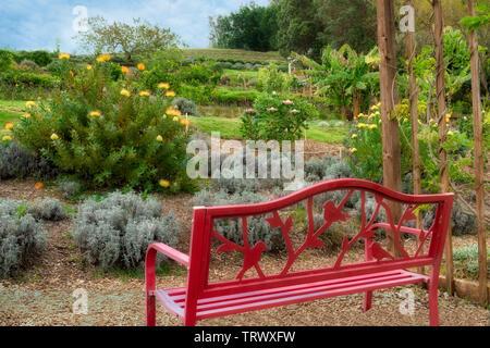 Banc dans des jardins à Ali'i Kula Lavender Farm. Maui, Hawaii Photo Stock