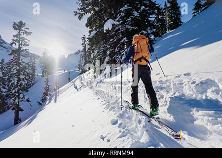 Ski de fond, se déplaçant le long de la piste couverte de neige ensoleillée aux beaux, montagne idyllique Photo Stock