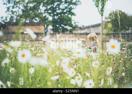 Garçon Fille daisy field Photo Stock