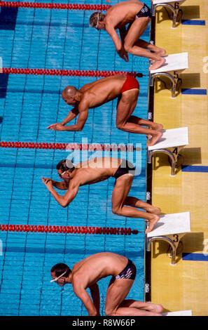 Les nageurs en début de course Photo Stock
