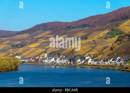 Zell, vallée de la Moselle, Rhénanie-Palatinat, Allemagne Photo Stock