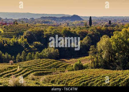 Italie, Vénétie. La Route du Prosecco. District de Trévise. Valdobbiadene. Avis de Cartizze vignobles. Photo Stock