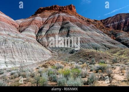 Topographie badlands formé par la Formation de Chinle triasique, anciennes rivières et lacs avec des compositions différentes représentées sous le nom de rainbow-comme ribbon Photo Stock