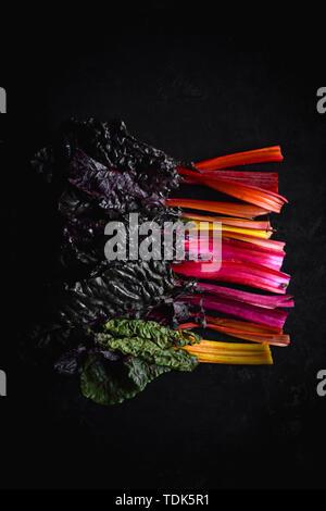 La Bette à carde multicolores Photo Stock