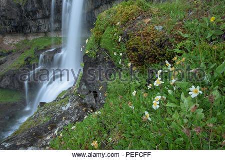 Une chute près de Vatnajokull. Photo Stock