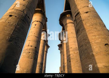 La colonnade d'Amenhotep III, temple de Luxor, Luxor, Egypte Photo Stock