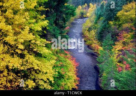 Rogue River et la couleur de l'automne. Rogue River Wild and Scenic River, Oregon Photo Stock