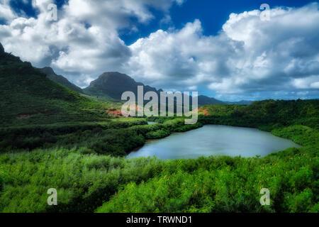 Alekoko étang à poissons. Kauai, Hawaii Photo Stock