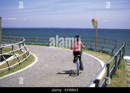 Femme sur un vélo par la mer Photo Stock