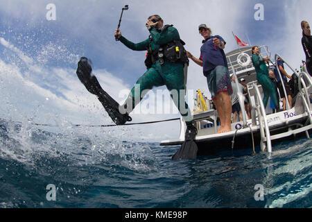 Scuba Diver pénètre dans l'eau faisant pas de géant. Photo Stock