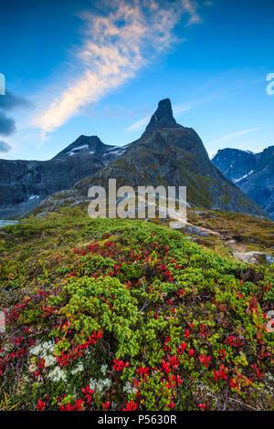 Matin d'automne dans Romsdalen, la Norvège. L'apogée Romsdalshorn, 1550 m, est à l'arrière-plan. Photo Stock