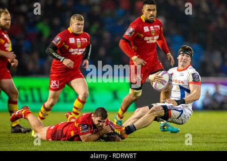 Stade AJ Bell, Salford, Royaume-Uni. 19 Jan, 2019. European Challenge Cup rugby, vente par rapport à Perpignan ; Tom Curry de Sale Sharks est abordé : l'action de Crédit Plus Sport/Alamy Live News Photo Stock