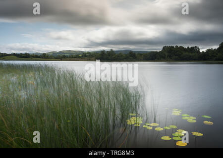 Lough Macnean, Co fermanagh, Irlande du Nord Photo Stock