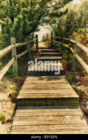New Jersey, USA, bruns, clôture, chemin Photo Stock