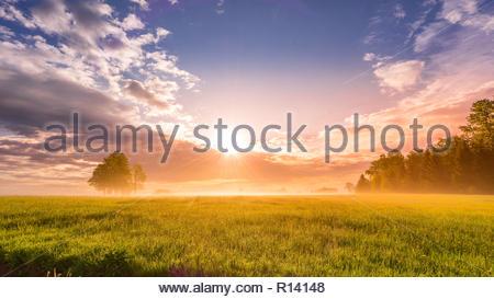 Vue panoramique d'un champ pendant le coucher du soleil Photo Stock