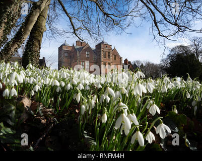 Kiplin Hall près de Scorton, Richmond, North Yorkshire à temps Snowdrop Photo Stock