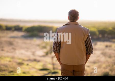 Vue arrière de l'homme à la prairie au Photo Stock