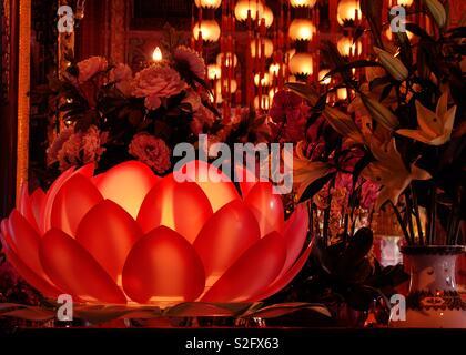 Du Temple à l'île de Lantau . Fleur de Lotus. La magie à Hong Kong - Big Buddha temple . L'amour les couleurs de cette photo. Photo Stock