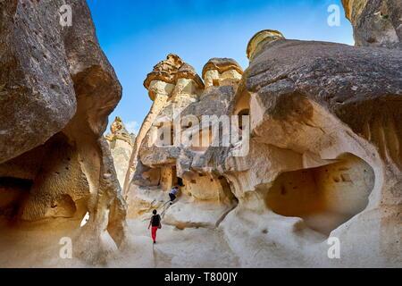 Les cheminées de fée de Pasabag, près de Zelve, Goreme, Cappadoce, Turquie Photo Stock