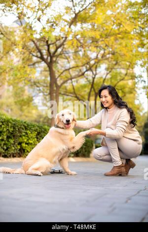 Happy young woman shaking dog's Paw Photo Stock