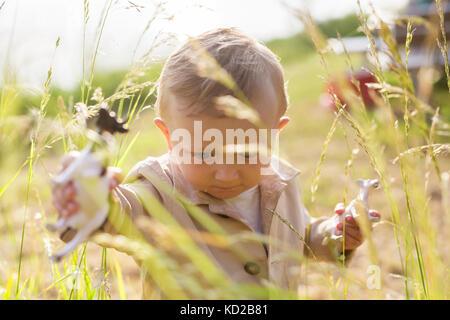 Baby Boy (18-23 mois) marcher dans l'herbe haute Photo Stock