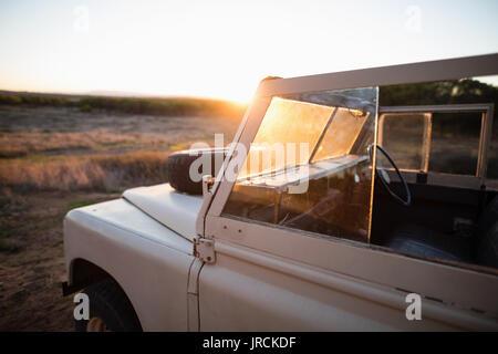 Véhicule dans les Prairies au cours de matin Photo Stock