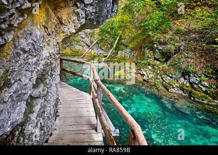 Slovénie - Gorges de Vintgar, parc national du Triglav, Alpes Juliennes Photo Stock