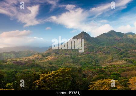 Tôt le matin, sur le côté est de Altos de Campana national park, République du Panama. Photo Stock