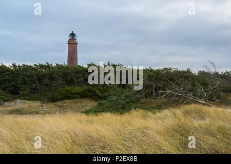 La côte, le phare, la mer Baltique, la plage de l'Ouest, Berlin, Germany, Europe Photo Stock