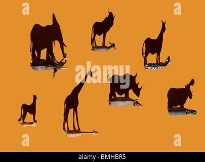 Jouet animaux sauvages abattus avec des ombres au plafond Photo Stock