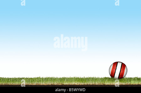 Un football sur l'herbe Photo Stock