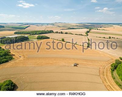 Antenne de récolte paysage de moissonneuse-batteuse, champ de blé d'été coupe tracteur agricole remorque et ciel bleu Photo Stock