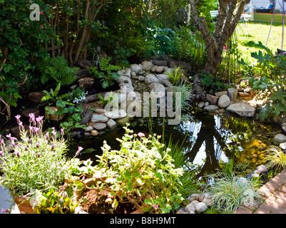 Bassin de jardin de la faune Photo Stock