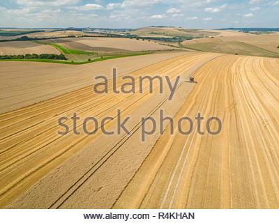 Paysage de l'antenne de la récolte à la moissonneuse-batteuse de blé d'été de coupe sur de grandes cultures farm Photo Stock