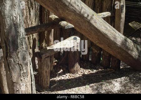 Dead-Cherokee automne piège à ours, Qualla Réservation, Caroline du Nord. Photographie numérique Photo Stock