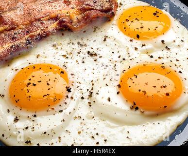 œufs frits Photo Stock