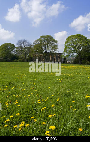 Vue sur une prairie de fleurs sauvages à l'Orangerie à The Green Lawns, Newcastle upon Tyne. George Photo Stock