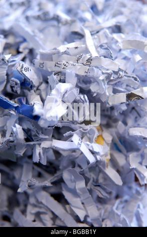 Photographie de papier déchiqueté de la vie privée documents d'identité fraude Photo Stock