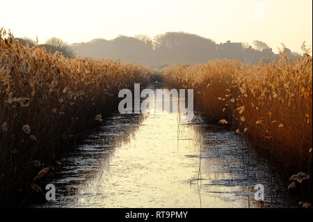 Les marais, le CLAJ claj-next-the-Sea, North Norfolk, Angleterre Photo Stock