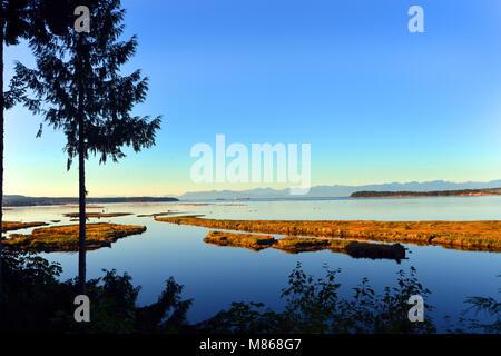 L'île de Vancouver, Colombie-Britannique, Canada Photo Stock