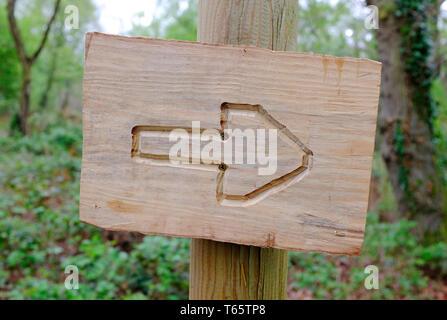 Bois sculpté à la main sur la flèche de sélection de Woodland, Norfolk, Angleterre Photo Stock