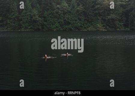 Couple swimming in lake Photo Stock