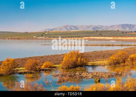 Laguna de Fuente Piedra et la résidence La Réserve naturelle pour de nombreux oiseaux d'avril à août y compris les flamants, Malaga, Andalousie, Espagne, Europe Photo Stock