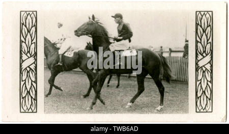 Vaals, cheval de course, administré par E Moss, formateur F Williams. Gagnant du handicap d'Epsom et Cantala Stakes en 1927. Date: vers la fin des années 20 Photo Stock