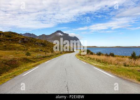 Road, été, littoral, Vestvagoya, Lofoten, Norvège, Europe Photo Stock