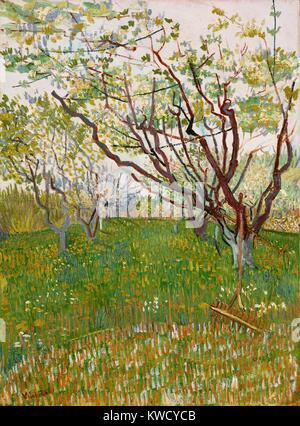 Le Verger en fleurs, par Vincent Van Gogh, 1888, Dutch Postimpressionnistes, huile sur toile. Le moment angulaire Photo Stock
