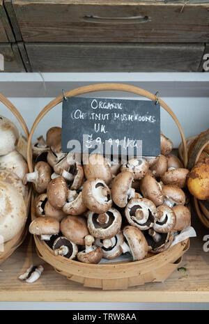 Champignons Portobello bio en vente à Daylesford Organic farm shop festival d'été. Daylesford, Cotswolds, Gloucestershire, Angleterre Photo Stock