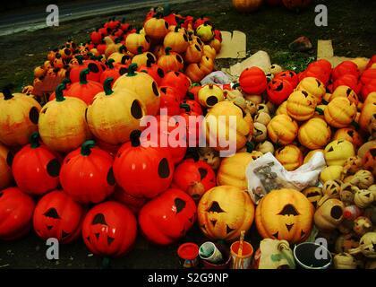 🎃la citrouille pour Halloween le 🎃La Marquesa . Le Mexique Photo Stock