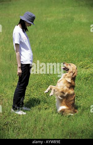 Femme avec un chien dans le pré Photo Stock